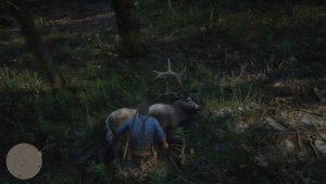 RDR2 Deer