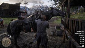 RDR2 horsecare