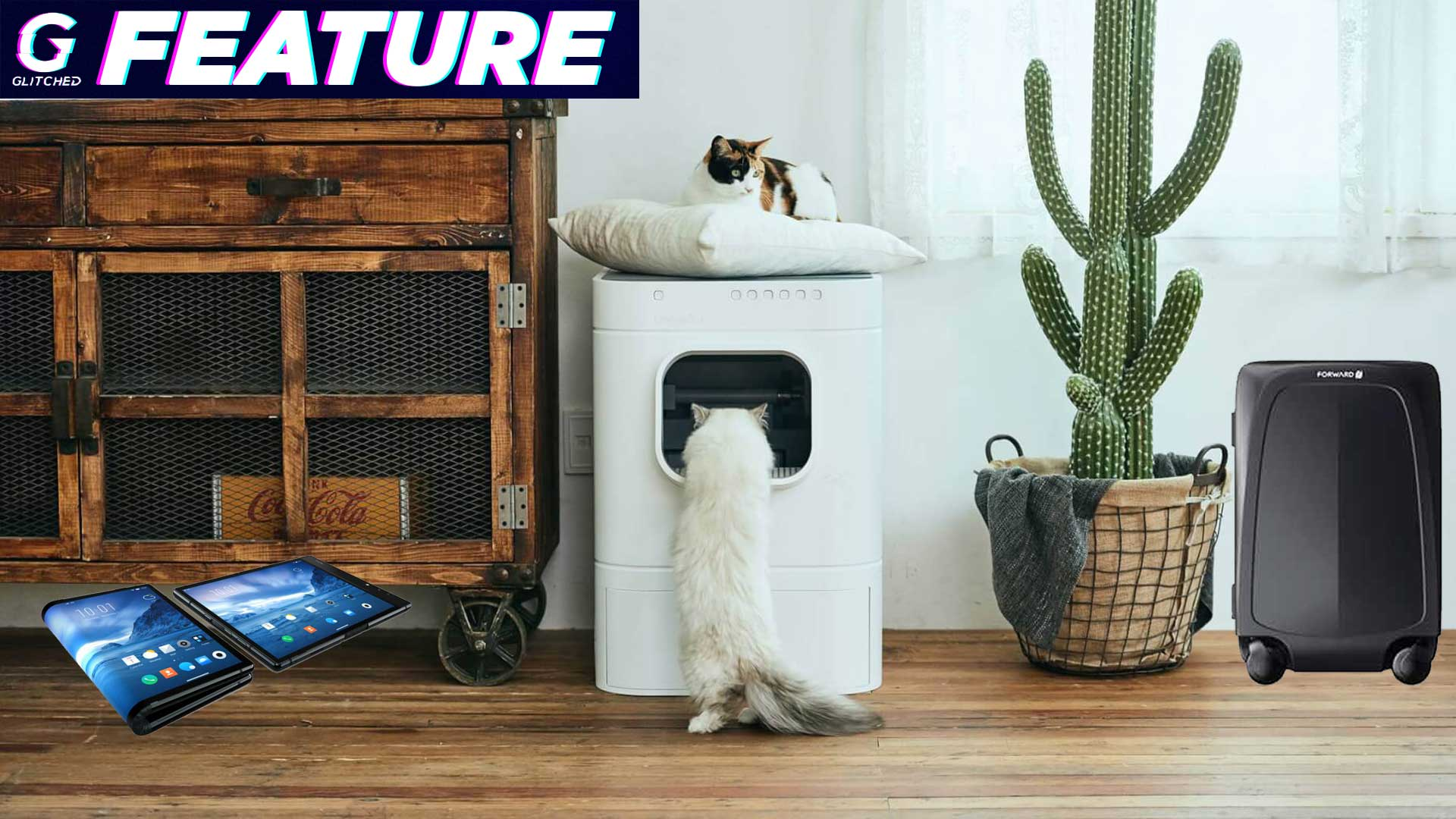 Best Self Cleaning Litter Box 2020.Ping Pong Playing Robot Self Cleaning Litter Boxes The