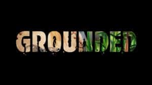 Grounded X019 Obsidian Entertainment Microsoft
