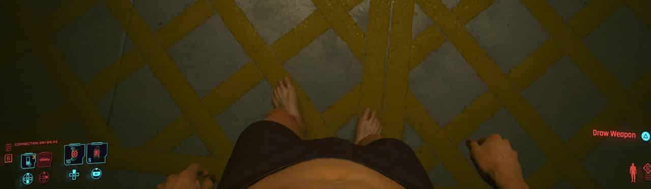 Cyberpunk 2077 Genitals Naked