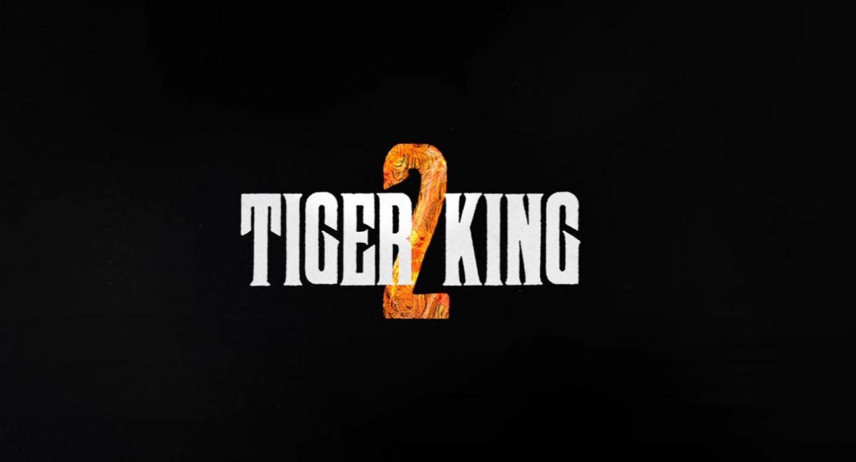 Netflix Tiger King 2